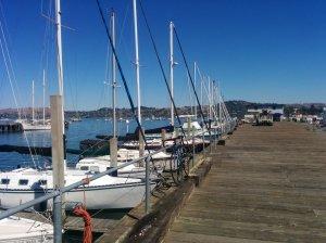The dock in Sausalito.