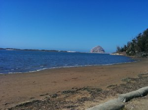 "I took a run on Black Hill then swam at this beach near Morrow Rock, a 581-foot tall ""volcanic plug."""
