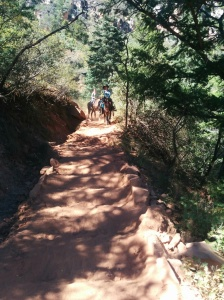 Encountering horses on the Kaibab Trail.